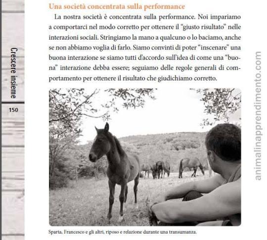 Comprendere il cavallo transumanza